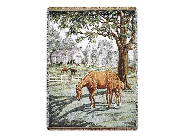 Lazy Meadow Equestrian Horse Pictorial Decorative Afghan Throw Blanket 50
