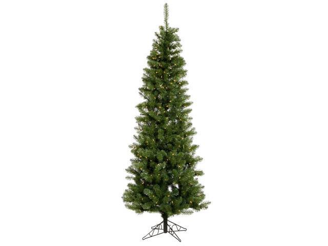 5.5' Pre-Lit Salem Pine Pencil Artificial Christmas Tree - Clear Dura Lights
