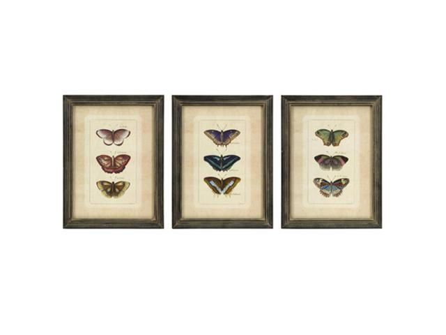 Set of 3 Pale Pink Academic Showcase Butterfly Collection Framed Wall Art