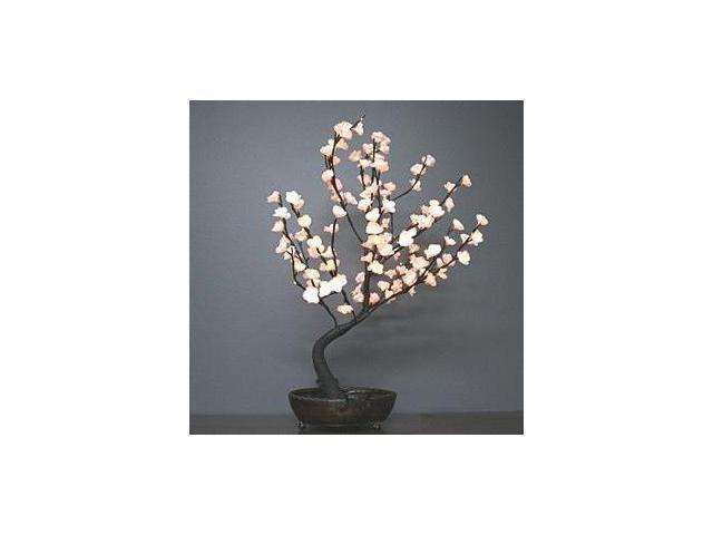 Light Garden 00041 - 30