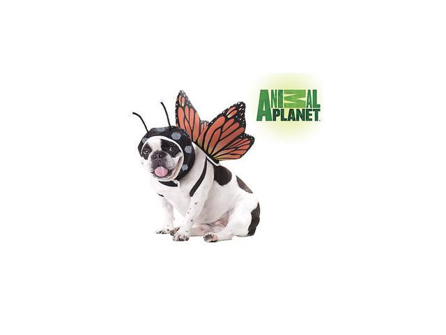 Butterfly Pet Costume by Animal Planet