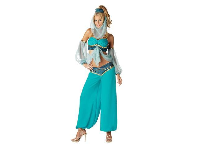 Harems Jewel Women's Elite Costume