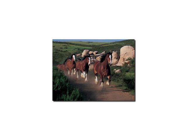 Clydesdales Running Free - 18 x 24 Canvas