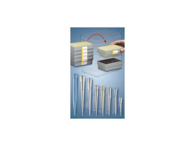 Tip 200-1000µ l Epdf/Gilson Blue RPK BIO Filter Case with: 1000 Units