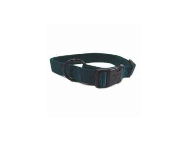 Hamilton Pet Company Adjustable Dog Collar, Hunter Green - FAL 18/26 DG