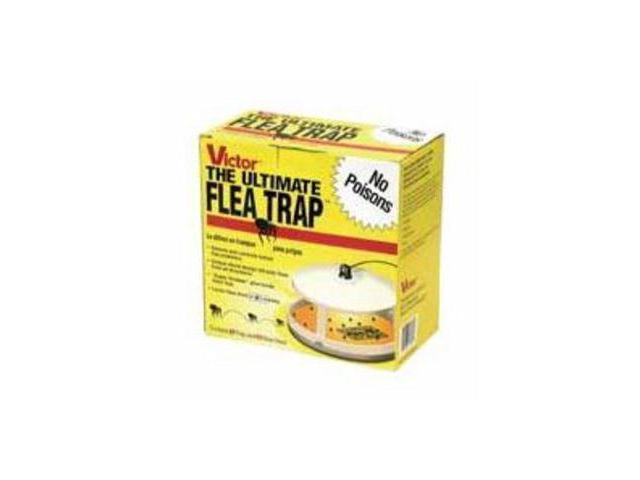 Victor Ultimate Flea Trap Woodstream Insect Traps and Bait M230 072868132308