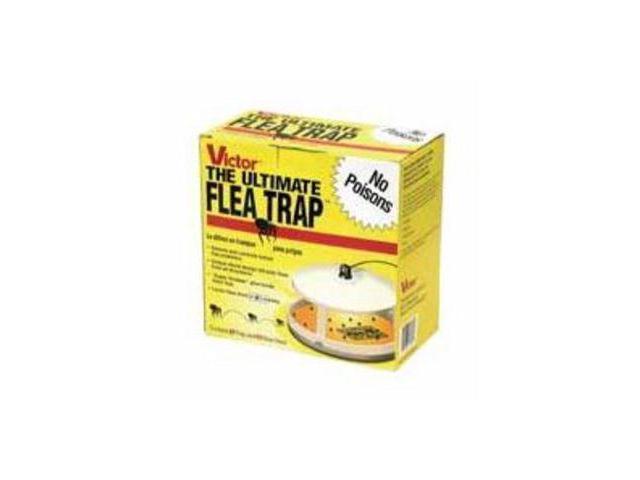 Woodstream Lawn & Garden Victor Ultimate Flea Trap, 1 Pack - M230