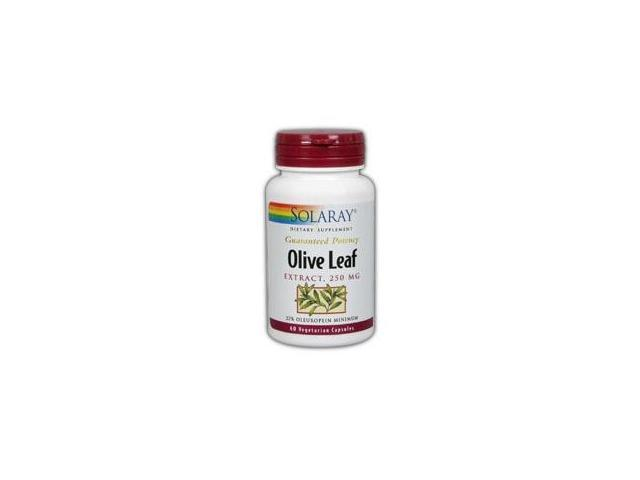 Olive Leaf Extract 22% - Solaray - 60 - Capsule