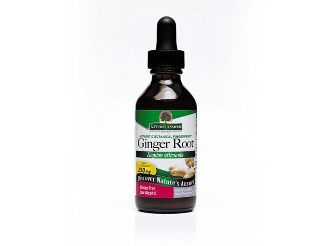 Ginger Root Extract - Nature's Answer - 2 oz - Liquid