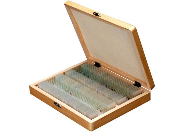 100 PC Prepared Microscope Glass Slides - Set A