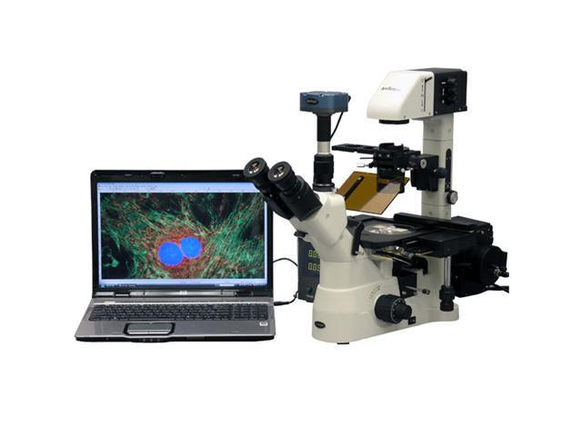 40X-900X Phase Fluorescence Inverted Microscope w 5MP CCD Fluo Camera