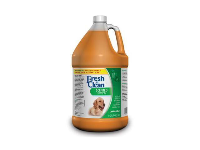 Fresh N Clean Scented Shampoo - 1 gallon