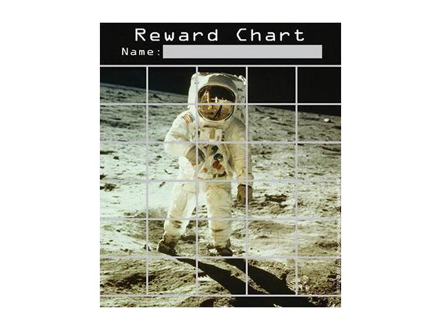 SPACE MINI REWARD CHARTS