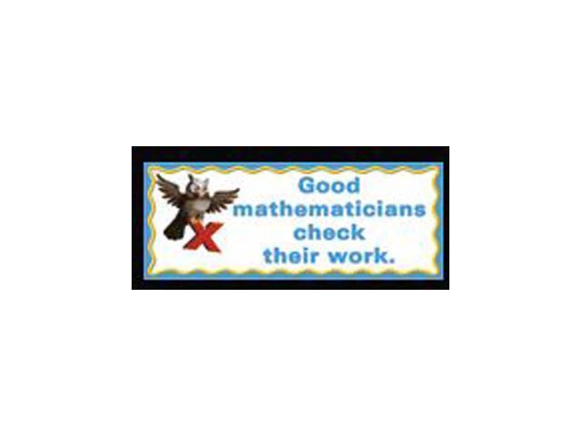 WHAT GOOD MATHEMATICIANS DO