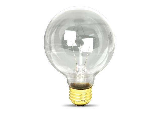 60W G25 Globe Light Bulbs