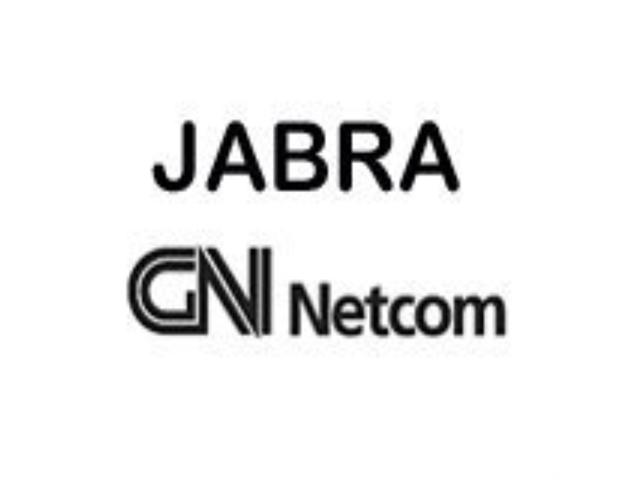 New - Jabra SureFit 0462-799 Ear Hook - BF8601