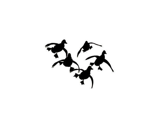Ducks Cupped Up Decal
