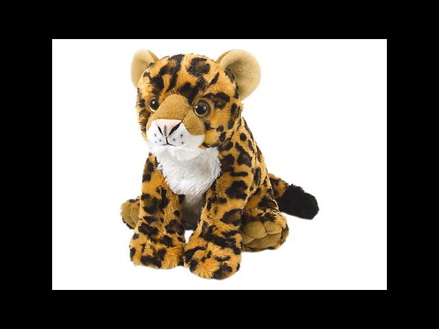Leopard Baby Cuddlekin 12
