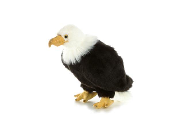 Regal Eagle 10