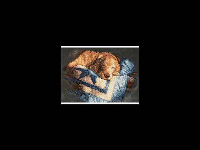 Snooze Stamped Cross Stitch Kit-14