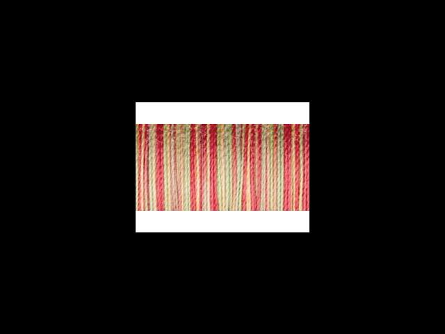 Sulky Blendables Thread 12 Weight 330 Yards-Summer Garden