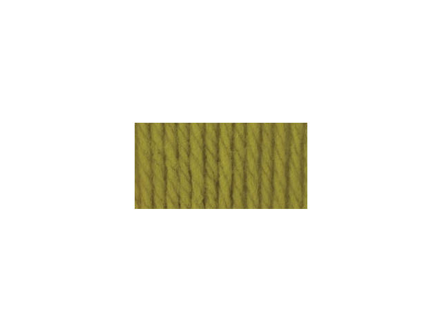 Softee Chunky Yarn-Grass
