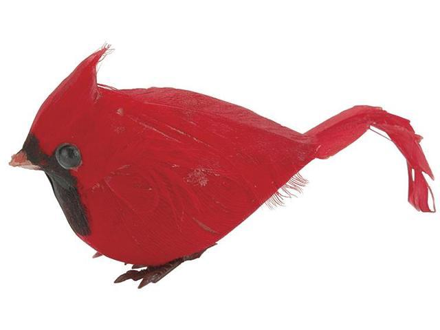 Mushroom Bird 2.5