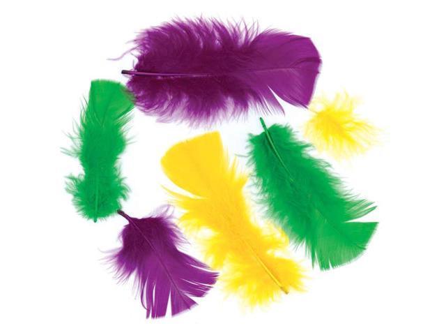 Turkey Plumage Feathers .5oz-Purple, Gold & Green