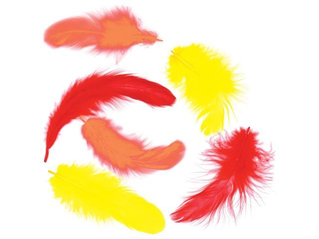 Chicken Plumage Feathers .25oz-Fire