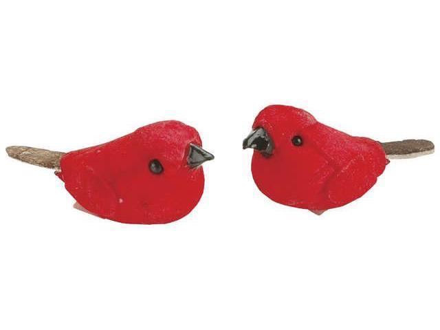 Mushroom Birds 1