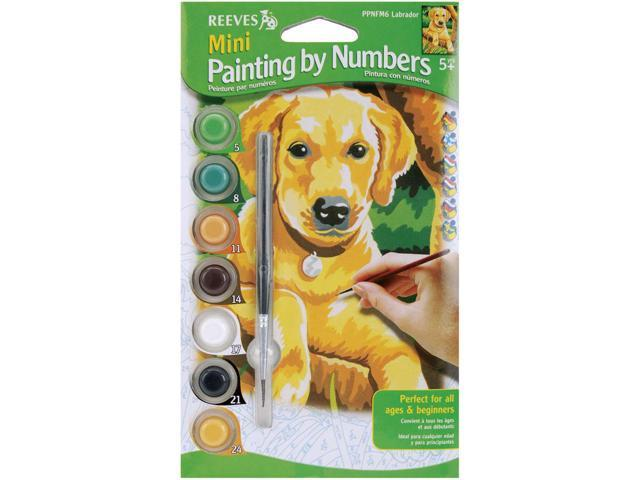Mini Paint By Number Kit 4.5