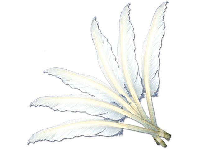 Indian Feathers 6/Pkg-White