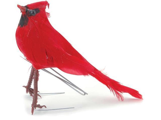 Mushroom Bird 5