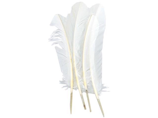 Turkey Quill Feathers 4/Pkg-White