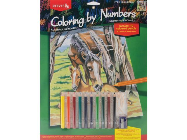 Color By Number Kit 9
