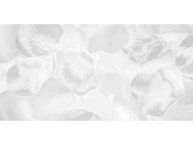 Victoria Lynn Satin Rose Petals 300/Pkg-White