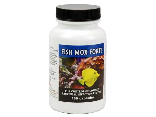 Fish Mox Forte (Amoxicillin) 500mg (100 capsules) - Newegg.com