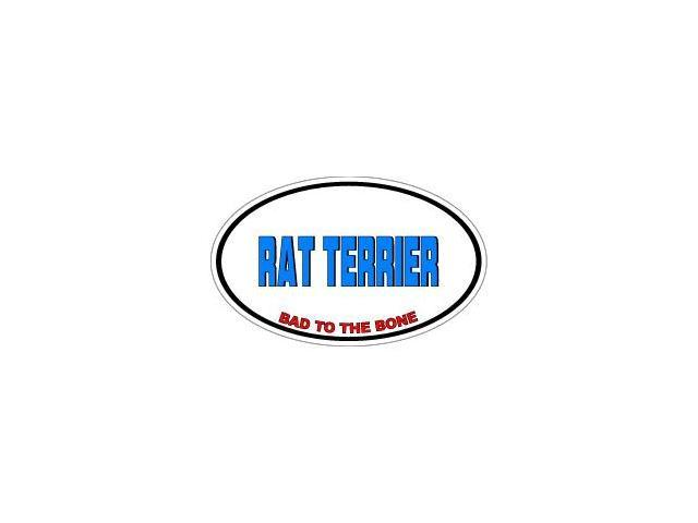RAT TERRIER Bad to the Bone - Dog Breed Sticker - 5.5