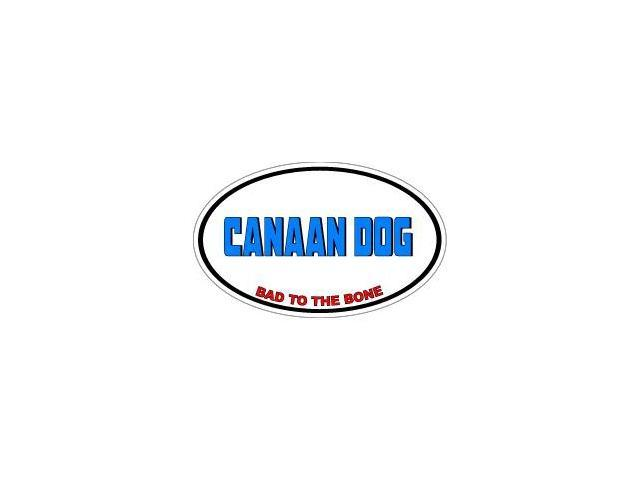 CANAAN DOG Bad to the Bone - Dog Breed Sticker - 5.5