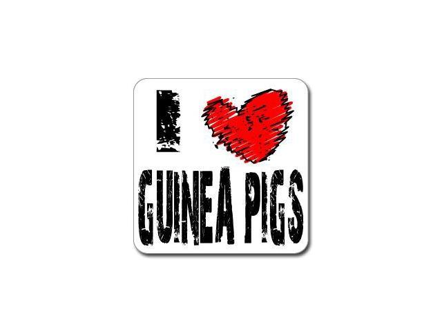 I Love Heart GUINEA PIGS Sticker - 5