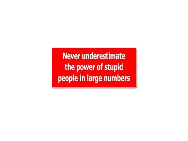 "Never Underestimate The Power Of Stupid People Sticker - 7"" (width) X 3.3"" (height)"