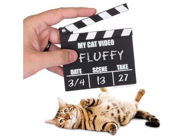 Accoutrements Cat Video Clapperboard