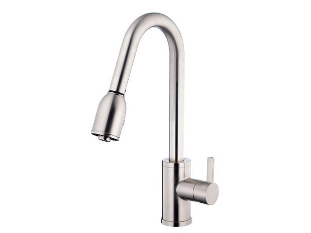 Danze D454530SS Amalfi Pull Down Kitchen Faucet, Stainless Steel ...