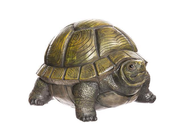 Turtle Portly - Medium