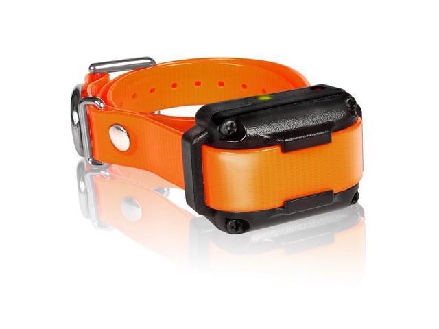 Dogtra IQ Plus Additional Receiver Orange Strap - IQ-PLUS-RX