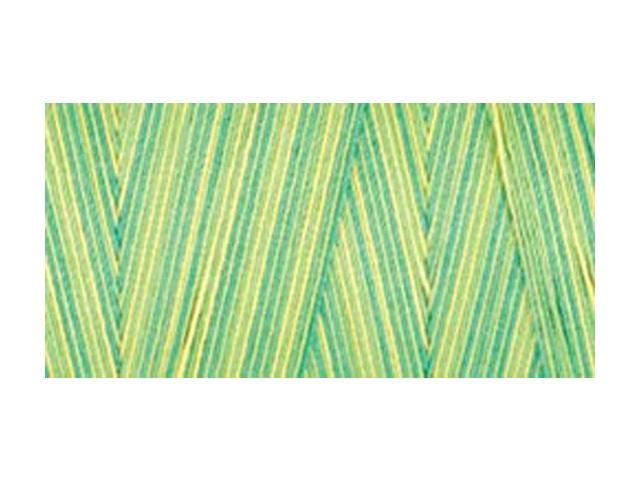 Star Mercerized Cotton Thread Variegated 1200 Yards-Spring Meadow