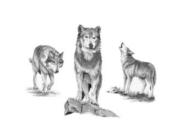 Sketching Made Easy Large Kit-Wolves