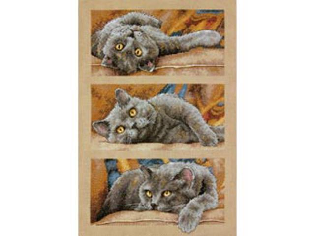 Max The Cat Counted Cross Stitch Kit-10