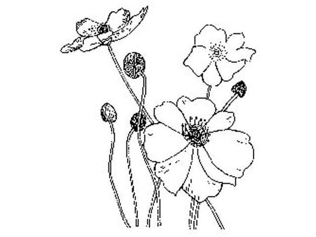 Penny Black Rubber Stamp 2.25
