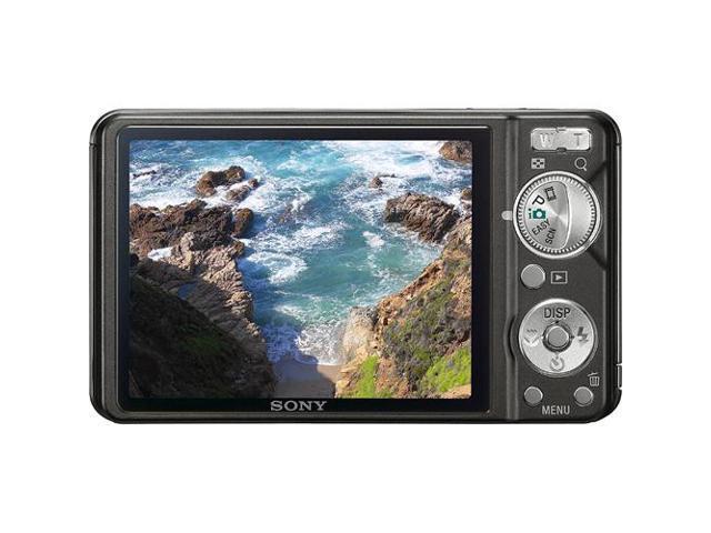 Sony DSC-W290 CyberShot 12.1 MP 5X Optical Zoom Digital Camera (Black)